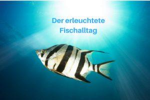 erleuchteter Fischalltag