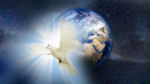 Erde Taube