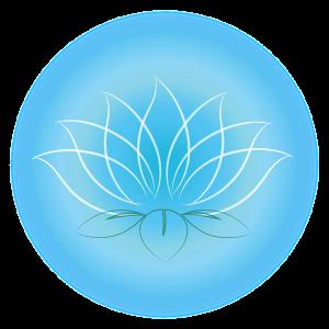Lotus - Leben in der Matrix wandeln