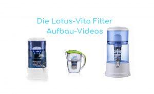 Lotus-Vita Filter Videos